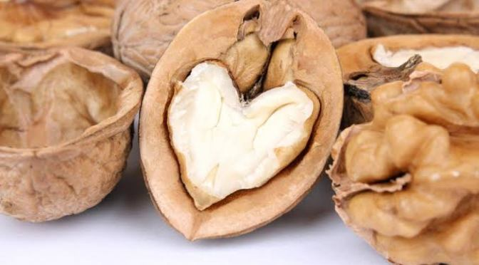 A research shows that eating walnuts daily lowers heart disease risk
