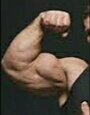 Exercises you can do for bigger Biceps
