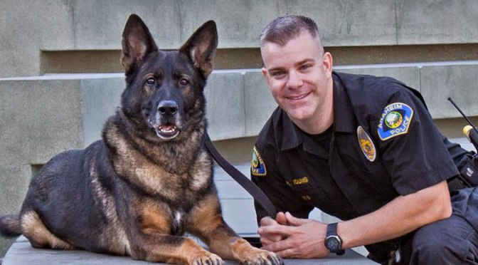 Police dog : Training and Early history