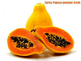 Pawpaw: fruit and health benefit.